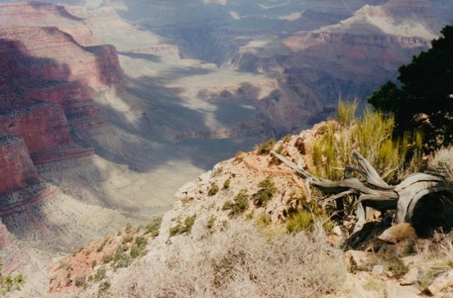 De Canyon, ergens vanaf de South Kaibab trail.
